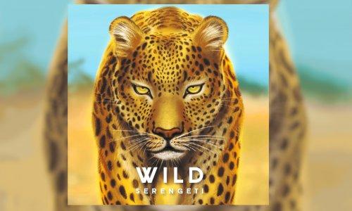 WILD: SERENGETI // Ende Juli auf Kickstarter