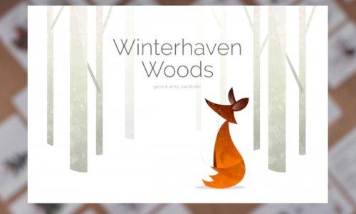 WINTERHAVEN WOODS // auf Kickstarter
